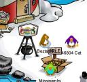 Club Penguin Coins for Change - Beach